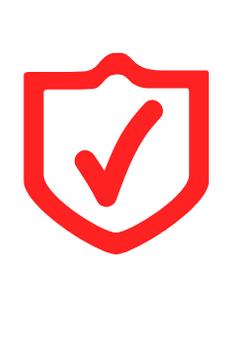 Maxima seguridad de información
